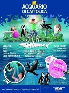 Baia di Sharky